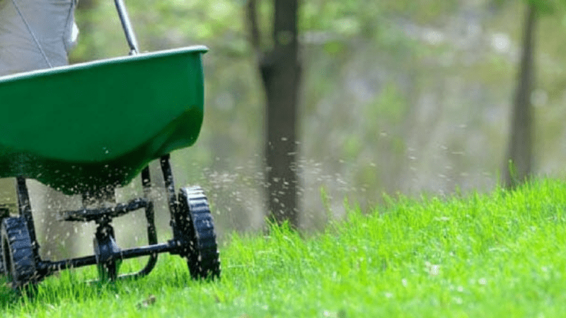 How to Use a Fertilizer and Seed Spreader?