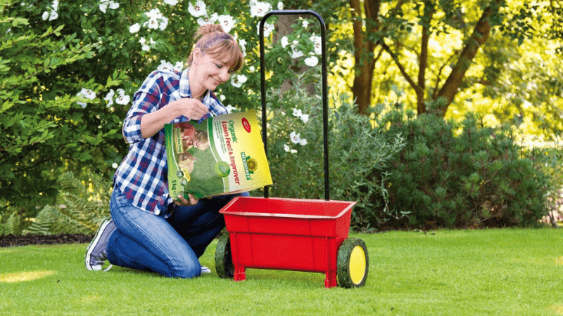 When to Apply Weed & Feed in Lawn?